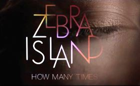 Zebra Island - How Many Times